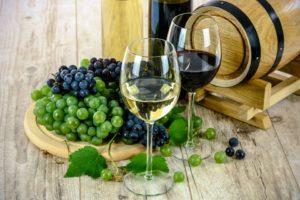 Tour de dégustation de vins à Venise - VivoVenetia
