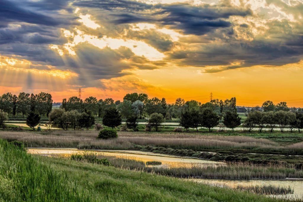Delta del Po e Rovigo
